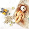 Lion (collection 1)